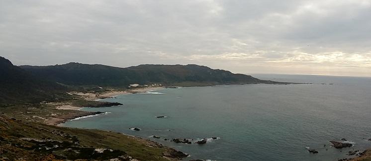 A praia do Trece, en Camariñas, é un dos lugares que concentra a maior parte das poboacións de camariña en Galicia. Foto: R. Pan.