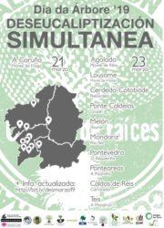 Cartel da deseucaliptización simultánea. Fonte: Cousa de Raíces.