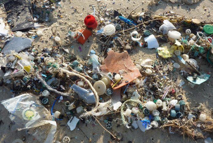 O estudo detectou plásticos no 72% dos animais que se analizaron nas foxas abisais.