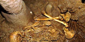 Esqueleto atopado en La Braña (León), que formou parte da análise sobre a historia xenética de Iberia. Fonte: CSIC.
