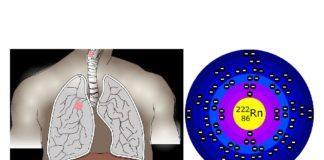A exposición ao radon é a primeira causa de risco de cancro de pulmón en persoas nunca fumadoras.