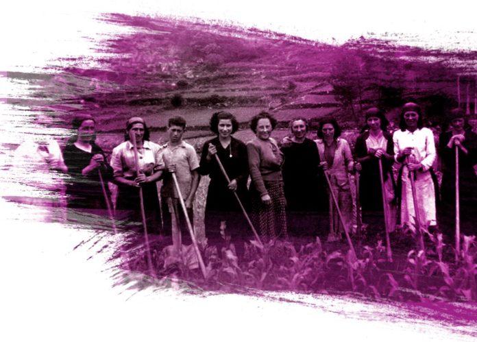Do gris ao violeta recolle xa máis de 200 biografías de mulleres de Pontevedra. Fonte: dogrisaovioleta.gal.