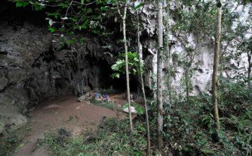 """Entrada da cova de Callao, en Luzón (Filipinas), onde se atoparon os restos do """"Homo luzonensis"""". Foto: Muséum national d'Histoire naturelle."""