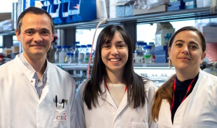 Alfonso Mora, Leticia Herrera-Melle e Guadalupe Sabio. Foto: CNIC.