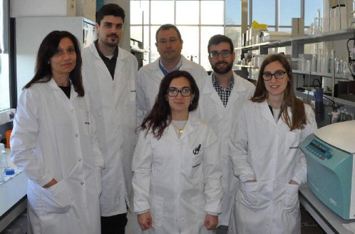 Integrantes do grupo de Enxeñaría Química 10 que participaron neste proxecto de investigación. Foto: Duvi.
