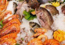 A produción de alimentos sostibles aproveitará descartes, algas e outros ingredientes para elaborar un produto listo para consumo.