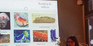 Tania Ballesteros, durante a súa charla sobre o carallo de mar. Foto: Duvi.