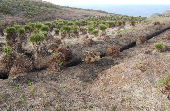 As obras na Estaca de Bares danaron o único humidal higrófilo da ZEC. Fonte: SGHN.