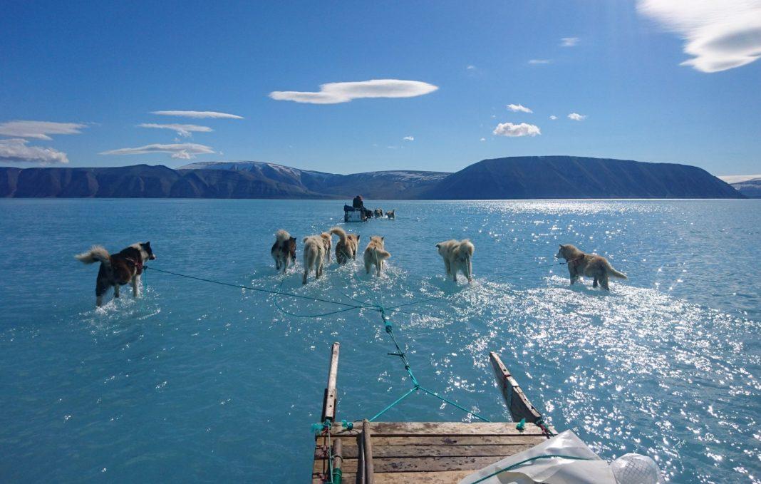 Imaxe tomada por Steffen Malskaer Olsen o pasado 13 de xuño ao noroeste de Groenlandia.