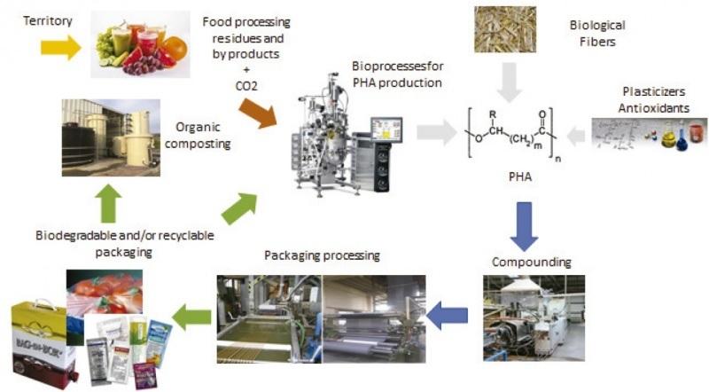 Esquema da produción de plásticos biodegradables no proxecto Usable Packaging. Fonte: USC.