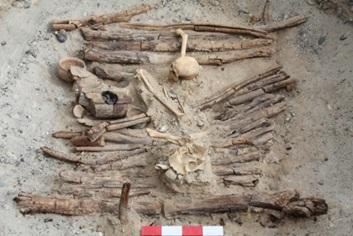 Unha das tumbas onde se atoparon os braseiros cos restos de marihuana. Fonte: UCAS.