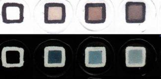 Imaxes do aparello en presenza de concentracións crecentes de arsénico. Foto: Duvi.
