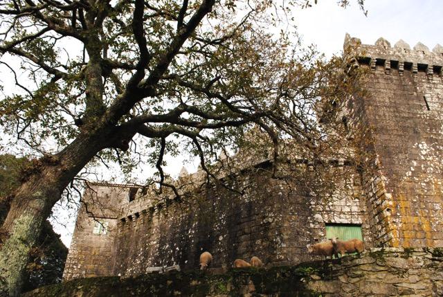 O Castelo de Vimianzo foi construído entre finais do século XII e comezos do XIII. Fonte: Concello de Vimianzo