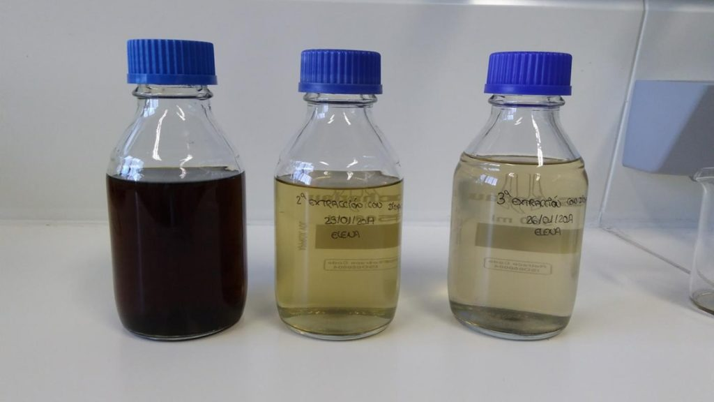 Na tese analízanse dúas propostas de pretratamento da materia prima procedente desta árbore. Foto: Duvi.