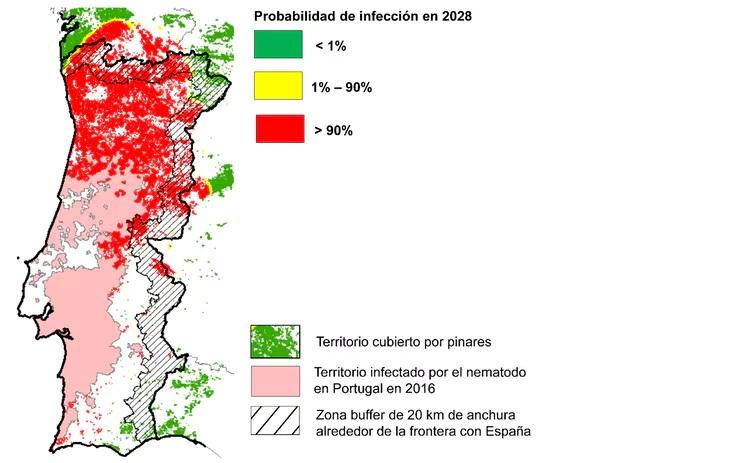 Probabilidade de infección dentro de 10 anos estimada polo modelo. Fonte: Begoña de la Fuente Martín.