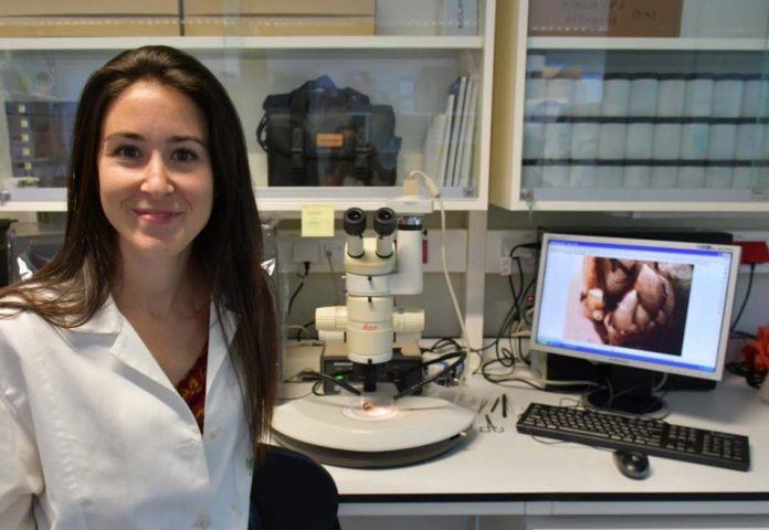 Alba Aguion realiza o seu doutoramento no Future Oceans Lab da Universidade de Vigo. Foto: Duvi.