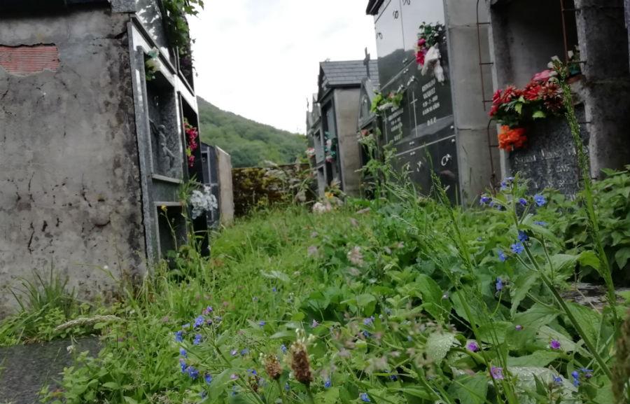 Cemiterio semiabandonado na aldea de Esperante, no Courel. Foto: R. Pan.