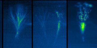 Parte da secuencia dun jet xigante captado en Colombia. As cámaras son monocromáticas, polo que osoftware colorea as imaxes pola súa intensidade, con tons azulados e verdes (aínda que por riba dos 35-40 km son realmente avermellados). Fonte: Grupo de Investigación de Raios da UPC.
