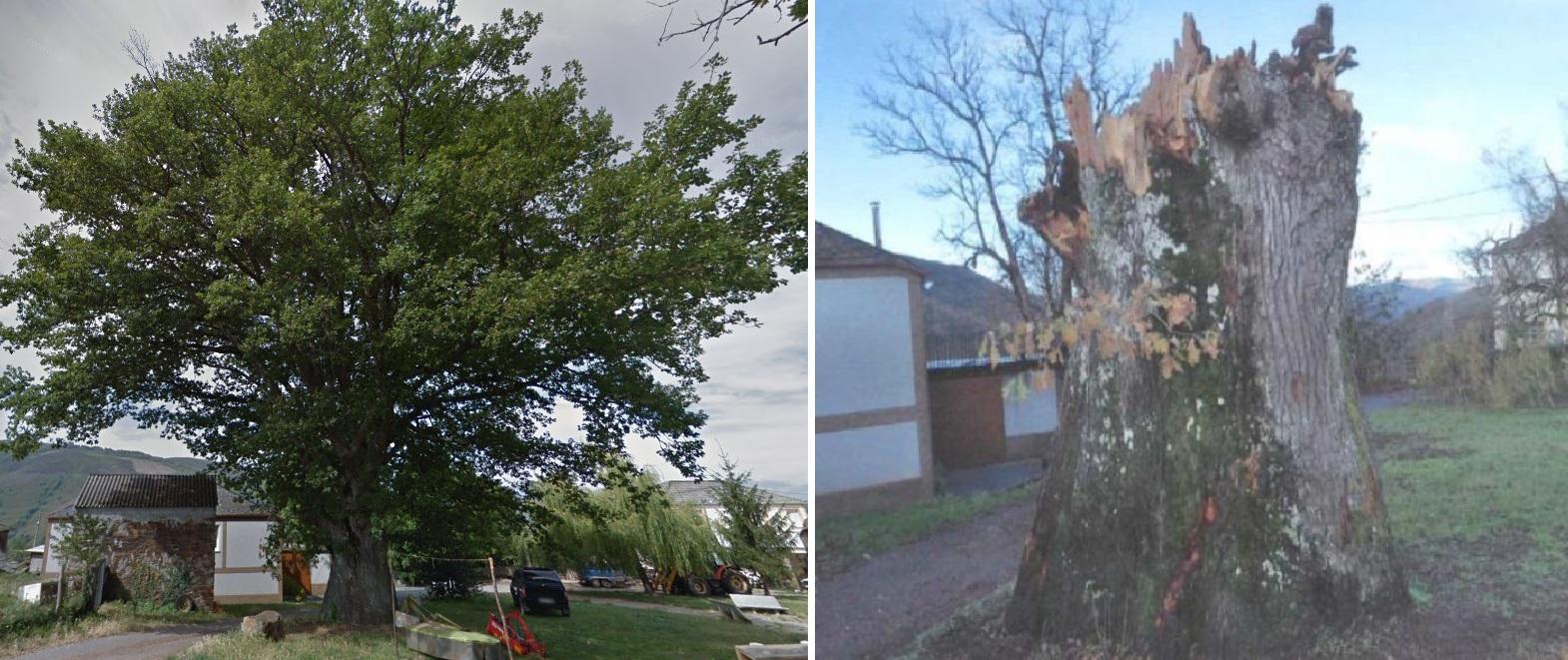 Fotos de 2009 (esquerda) e 2018. Imaxes de Miguel Ángel Montero Vaz e DXPN.