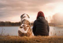 A nova fórmula usa a metilación do ADN para afinar a equivalencia de idades entre cans e humanos.