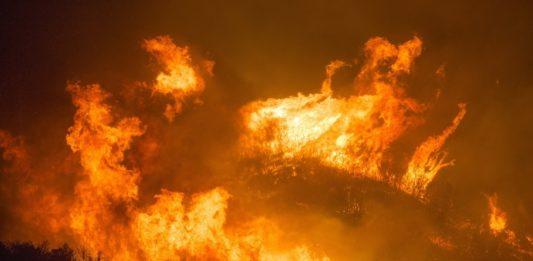 A tendencia amosa unha concentración da superficie queimada en menos incendios.