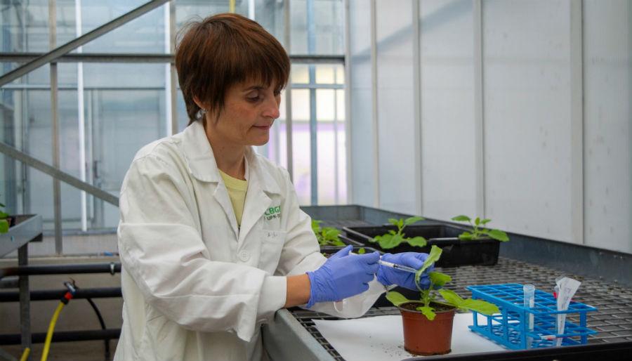 Patricia Fernández Calvo. Foto: UPM.