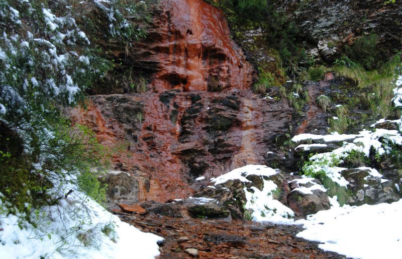 Fontes do Cervo, despois dunha nevarada. Imaxe: R. Pan.