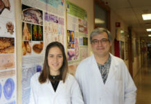 Paula Rodríguez Villamayor e Pablo Sánchez Quinteiro, autores do estudo sobre os coellos na Facultade de Veterinaria. Foto: USC.