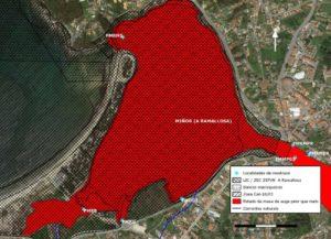 """As análises constatan que toda a foz do Miñor ten un estado da auga """"peor ca malo"""". Fonte: Ecotox."""