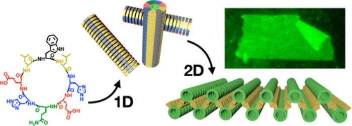 Representación das nanoláminas deseñadas por Nacho Insua. Fonte: JACS.