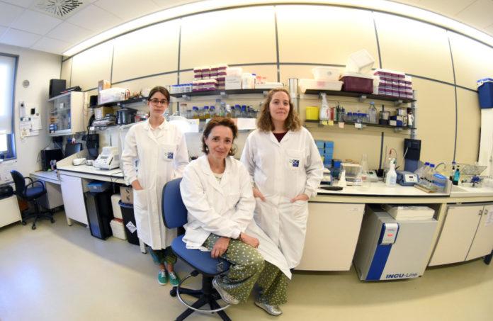 Ana Parga, Ana Otero e Andrea Muras, científicas do grupo Aquabiotech da USC que investigan a comunicación da placa bacteriana. Foto cedida por Andrea Muras.