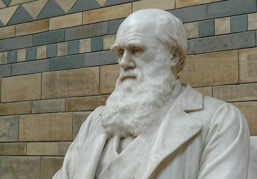 Estatua de Charles Darwin no Museo de Historia Natural de Londres.