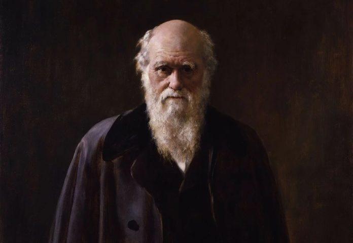 Retrato de Charles Darwin, obra de John Collier (1881-1883), exposto na National Portrait Gallery.