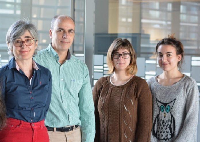 Investigadores do Laboratorio de Bioloxía Vascular que estuda as malformacións cavernosas cerebrais. Foto: CiMUS.