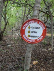 "Sinal que advirte da presenza da ""árbore da morte"". Fonte: JvL/CC BY 2.0"