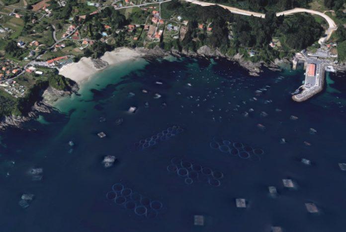 Os criadeiros dos ollomois, estruturas circulares que se ven na imaxe, fronte á costa de Lorbé (Oleiros). Foto: Google Maps.