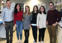 De esquerda a dereita: Ángel García Alonso, María N. Barrachina, Serena Lacerenza, Irene Izquierdo (primera autora), Lidia Hermida-Nogueira, y Luis A. Morán. Foto:CiMUS.