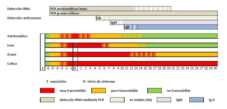 Períodos medios de transmisibilidade dos casos de Covid-19 e períodos de detección nos distintos tests. Fonte: Ministerio de Sanidad.