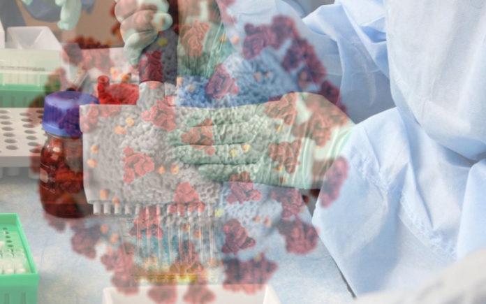 As probas PCR son o método que detecta o xenoma do virus nunha mostraxe do paciente tomada nos fluídos no nariz ou a boca.