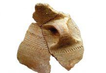 Vaso de cerámica cardial achado en Cova Eirós. Foto: USC.