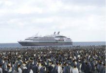 Un cruceiro fondeado na Antártida.