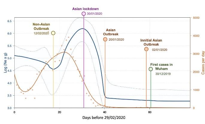 Evolución da variabilidade do virus (curva azul) e casos detectados (laranxa). A gráfica debe lerse de esquerda a dereita en orde cronolóxica. Fonte: Salas et al.