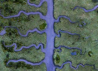 Imaxe aérea da ría de Betanzos. Foto: Milan Radisics.