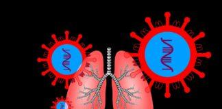 O encima ACE2 é unha das claves para explicar a capacidade de infección do SARS-CoV-2.