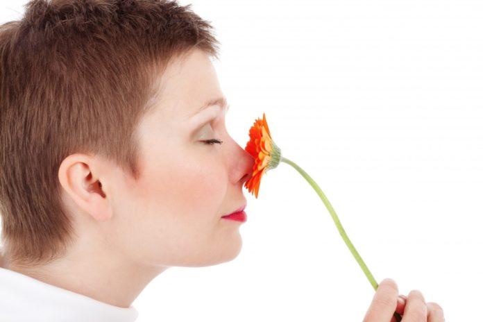 O olfacto é un sentido que configura boa parte dos nosos recordos.