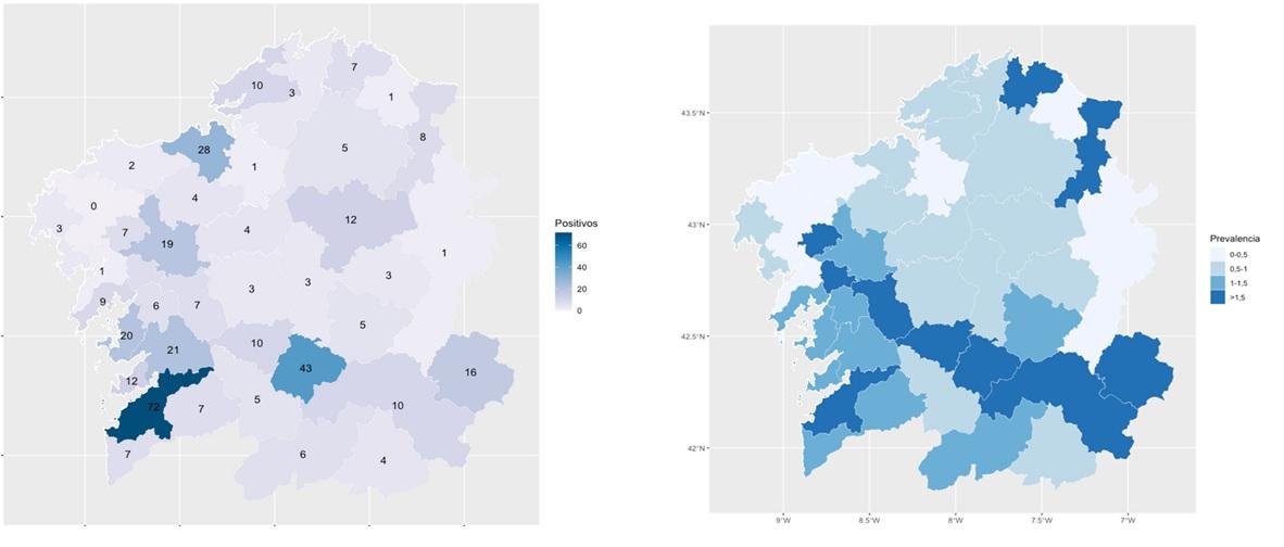 Mapa de positivos detectados por área (esquerda) e mapa de prevalencia en cada unha delas. Fonte: Consellería de Sanidade.