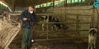 """Información sobre un veterinario de Lugo que se usou como chanza no programa """"Malicia Noticias"""". Imaxe: TVG."""
