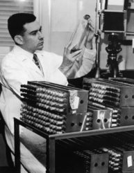 Hayflick no laboratorio nos anos 60. Fonte: Arquivos da Universidade de Pennsylvania.