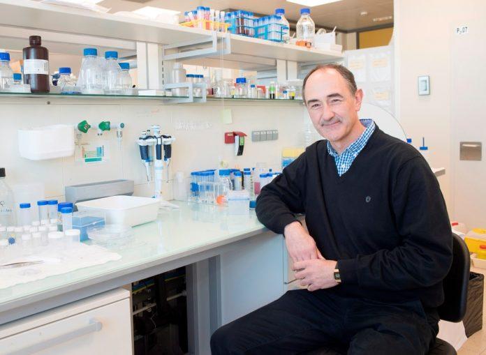 O científico lugués Luis Liz Marzán, do CIC biomaGUNE de Donostia, é o autor principal do artigo. Foto: CIC biomaGUNE.