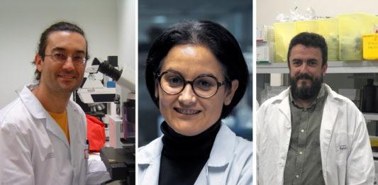 Carlos Spuch, María Mayán e Manuel Collado son investigadores nos hospitais de Vigo, A Coruña e Santiago.